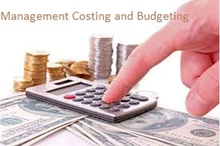 Unit 9 Management Accounting Costing and Budgeting Assignment