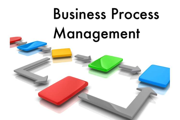 MIS352 Business Process Management Assignment Help
