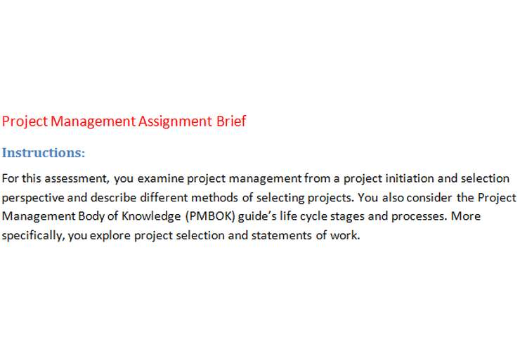 Project Management Assignment Brief