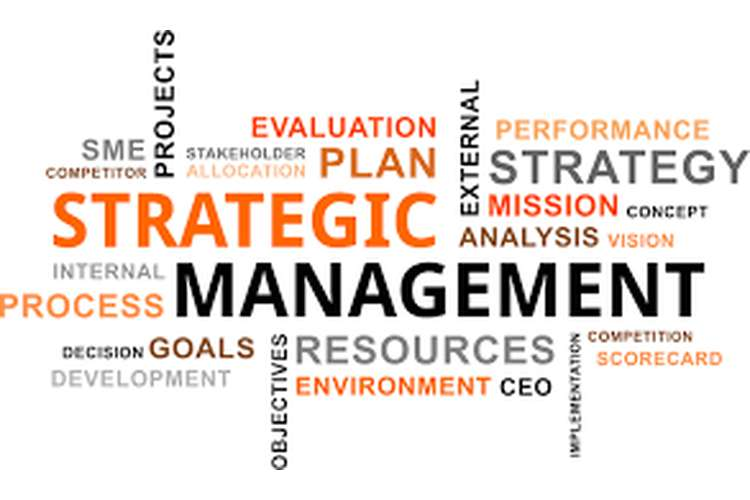 Strategic Management Analysis Assignment Help