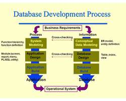 Business Report-Business Database Systems