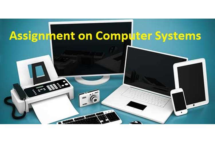 Assignment on Computer Systems
