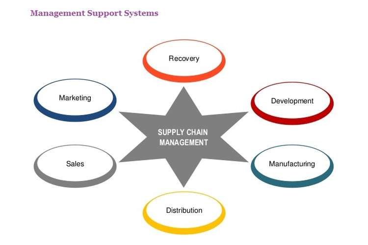 Management Support Systems Assignment Help
