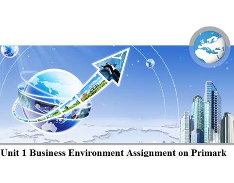 hnd business and environment assignment