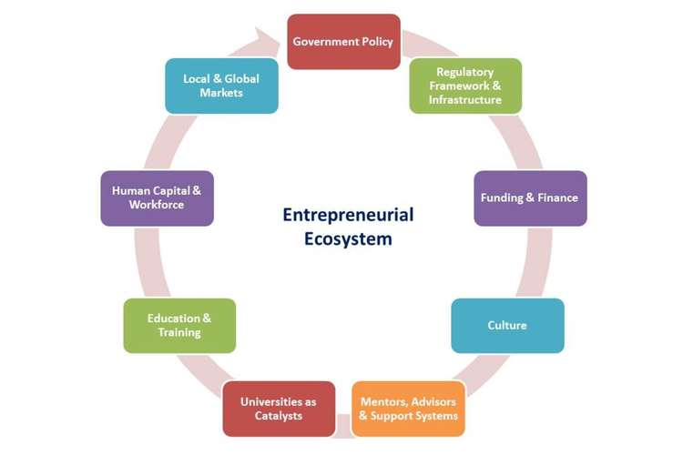 Global Opportunities for Entrepreneurial Growth Assignment