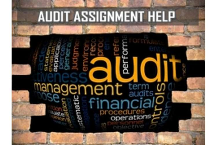 ACC305 Auditing and Professional Assignment Help