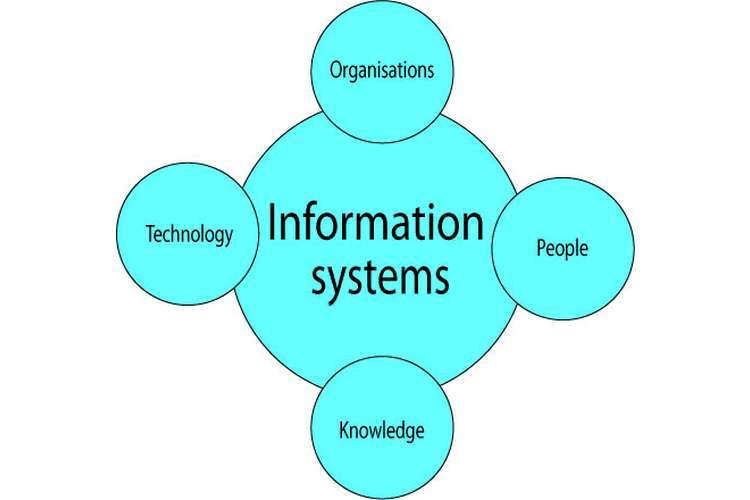 HI5019 Strategic Information Systems Assignments Solution