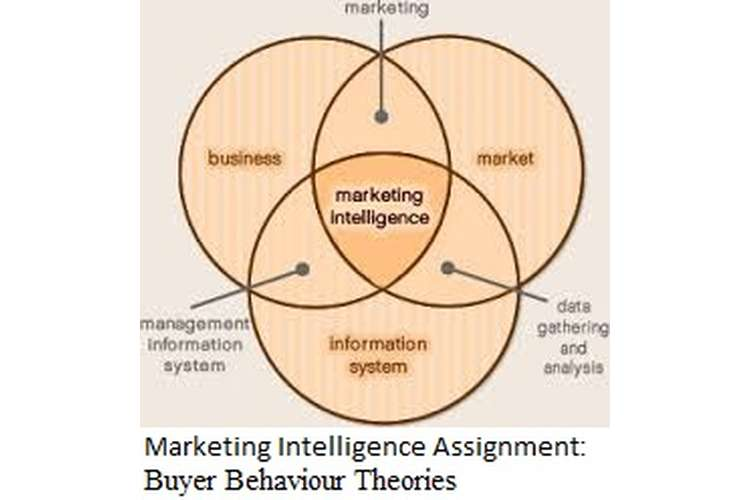 Marketing Intelligence Assignment - Buyer Behaviour Theories