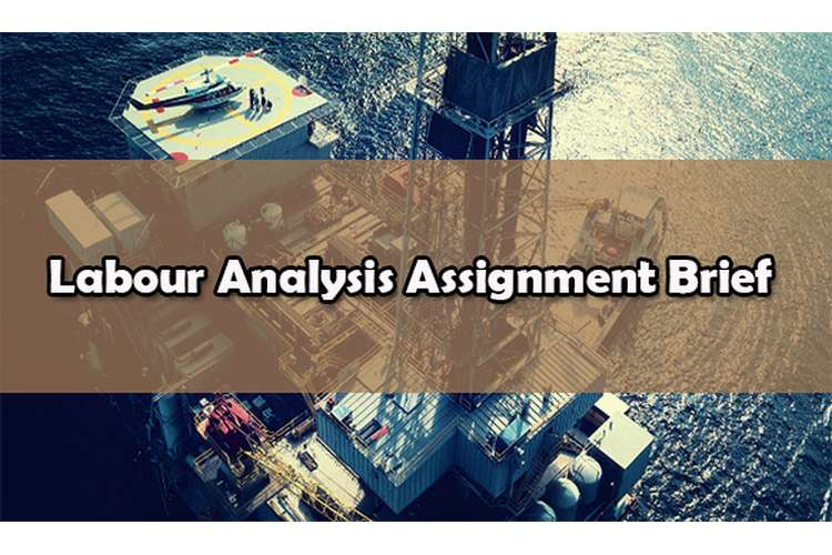 Labour Analysis Assignment Brief