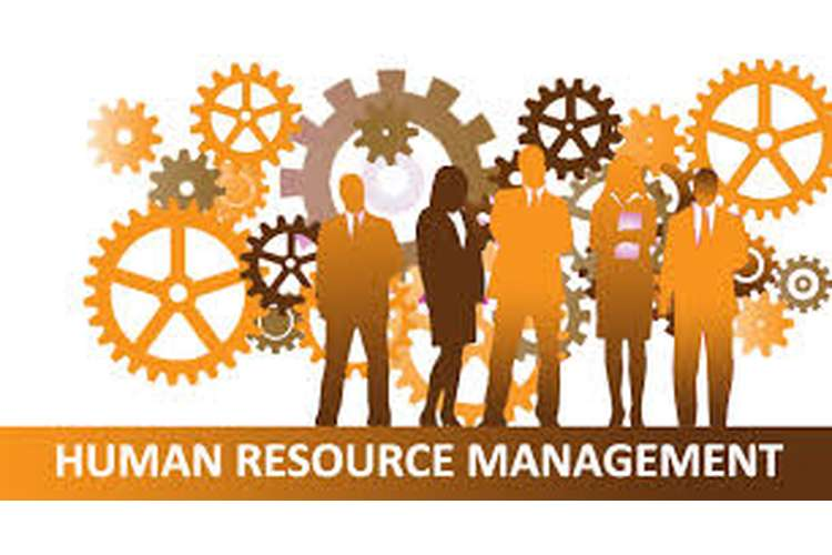 Managing Human resource Guest HRM Assignment