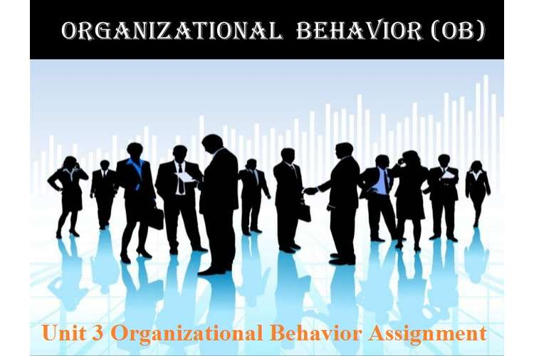 Unit 3 Organizational Behavior Assignment - CAPCO
