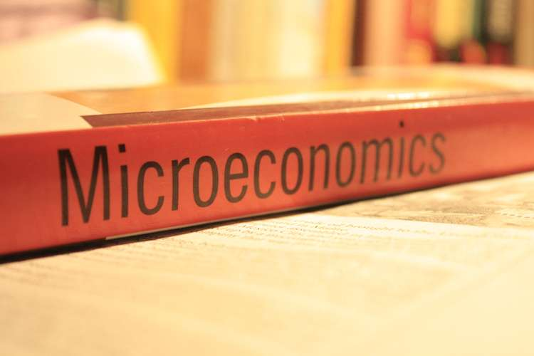 ECON111 Microeconomic Principles Oz Assignments
