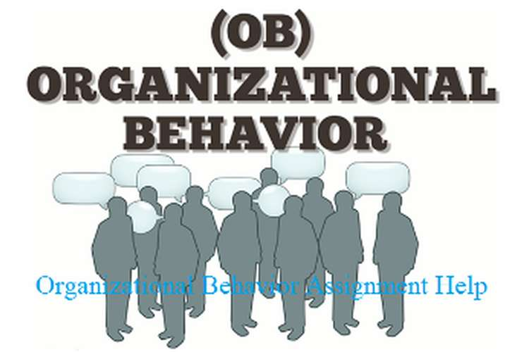 Organizational Behavior in Organization Assignment Help