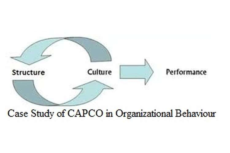 Unit 3 Case Study of CAPCO in Organizational Behaviour Assignment