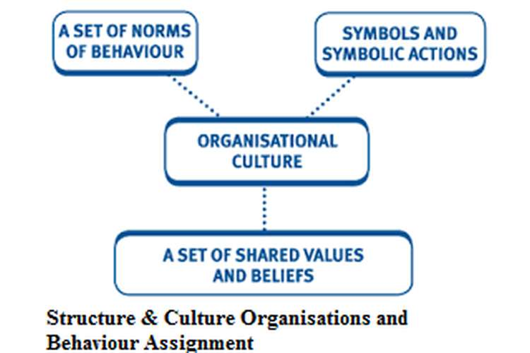Structure & Culture Organisations and Behavior Assignment