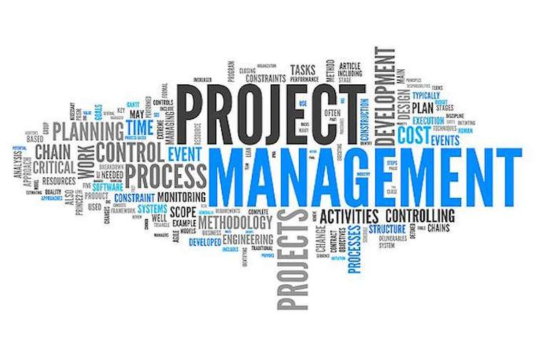 Construction Project Management Processes Assignments