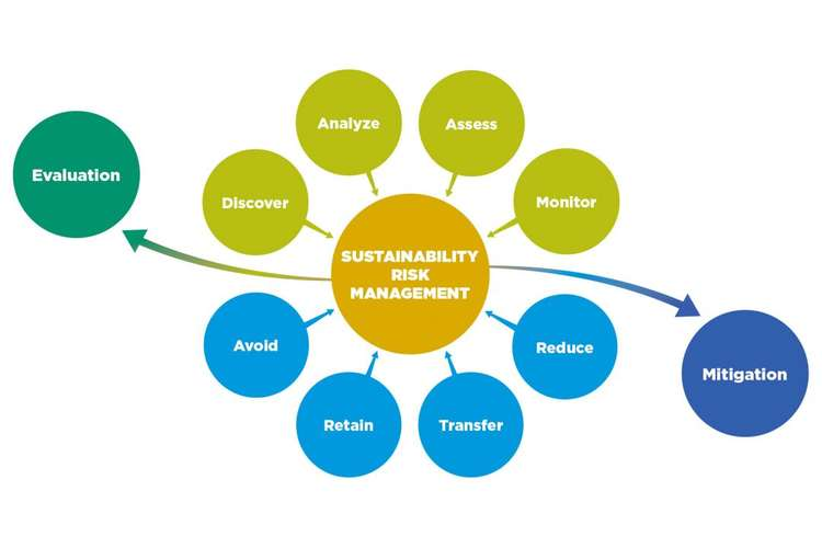 MGT583 Managing for Sustainability Assignment