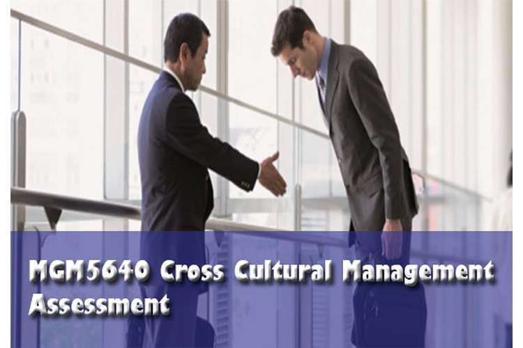 MGM5640 Cross Cultural Management Assessment