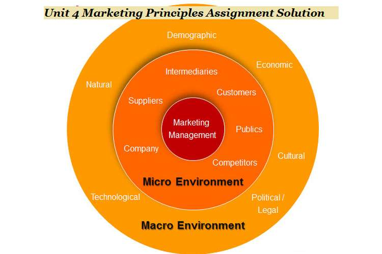 Unit 4 Marketing Principles Assignment Solution
