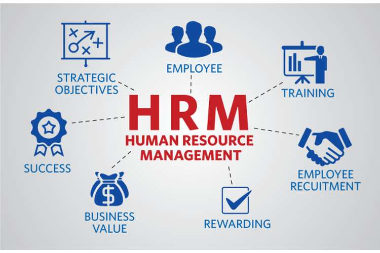 GSBS6040 Human Resource Management Assignment Help