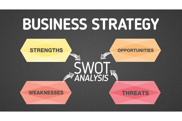 BUMGT6935 Business Strategy Oz Assignments