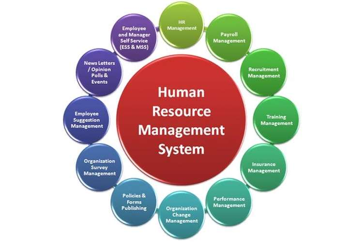 human resources harrods Unit 22 human resource management  p43 discuss the implications of health and safety legislation on human resources practices  harrods have focus on enhancing.