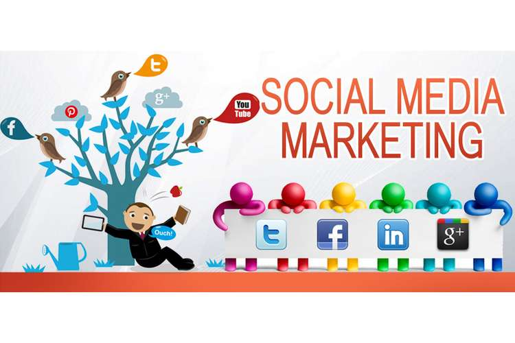 Social Media Marketing Assignment Solution