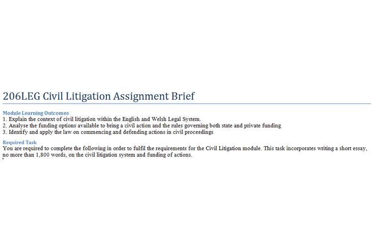 206LEG Civil Litigation Assignment Brief