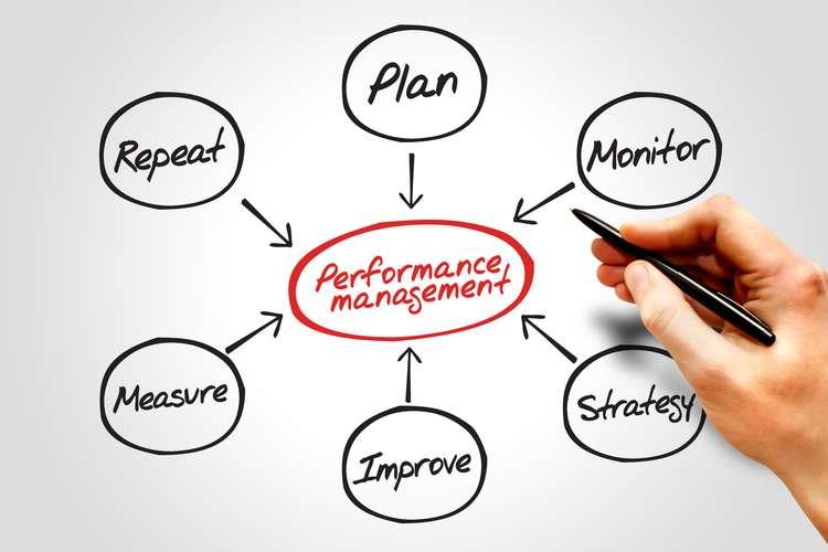 BSBMGT502 Performance Management System Oz Assignment