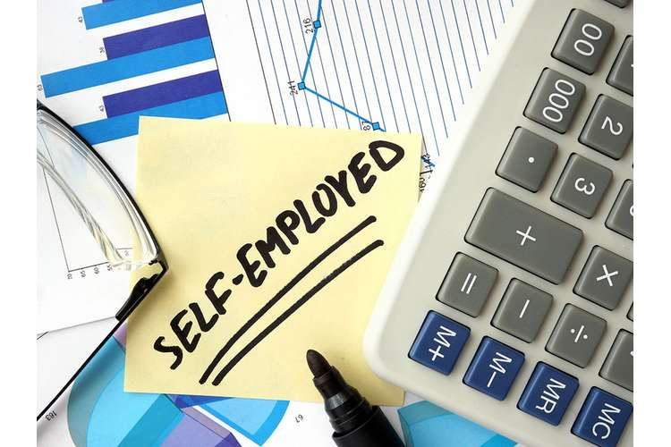 Which is Better Self Employed or Employed in a Company