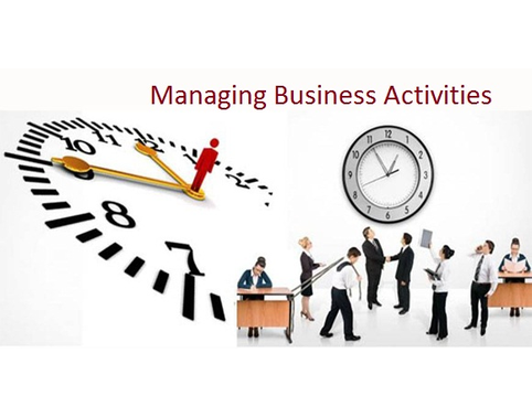 Managing Business Activities to Achieve Results Assignment Help