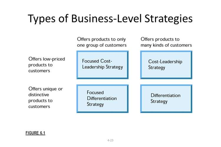 BUMGT6935 Business Level Strategy Assignments Solution