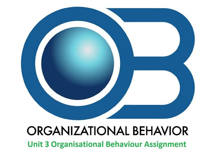 Unit 3 Organisational Behaviour Assignment