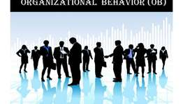 MNG82001 Organisational Behaviour Assignment Help