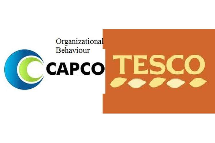 Unit 3 Organizational Behaviour Assignment CAPCO & Tesco