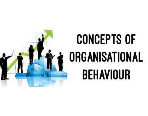 MGT202 Organizational Behaviour Assignment Help