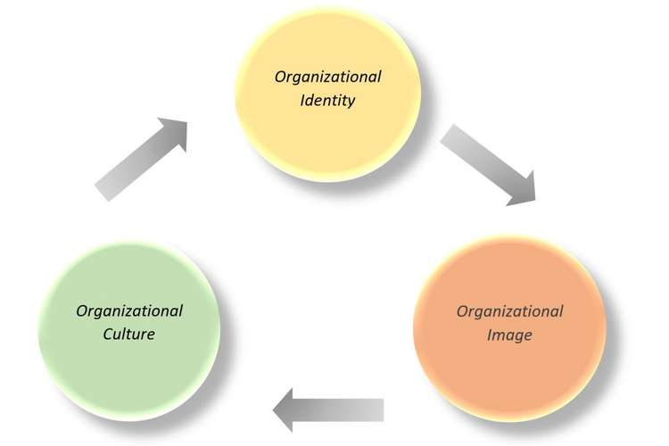 Organizational Culture Assignments Solution