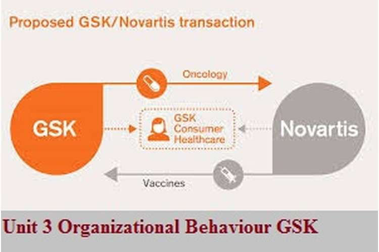 Unit 3 Organizational Behaviour Assignment GSK