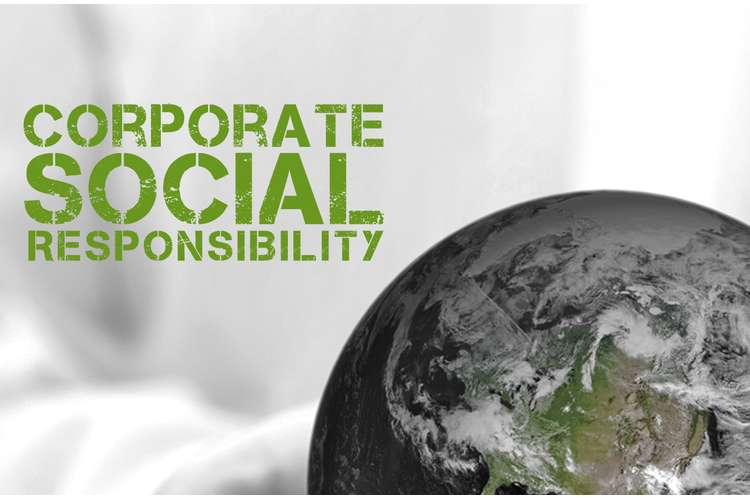 MGMT1102 Corporate Social Responsibility Assignments