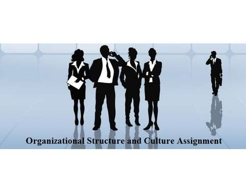 Unit 12 organizational Structure and Culture Assignment