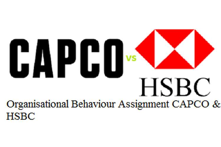 nit 3 Organisational Behaviour Assignment CAPCO & HSBC