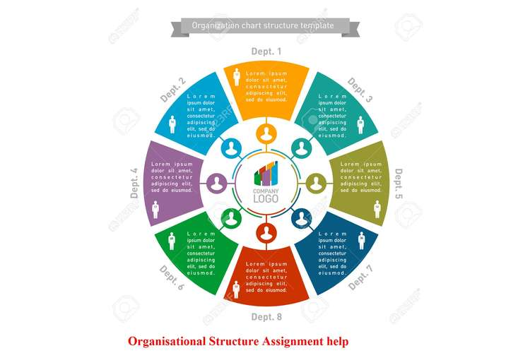 Organisational Structure Assignment help