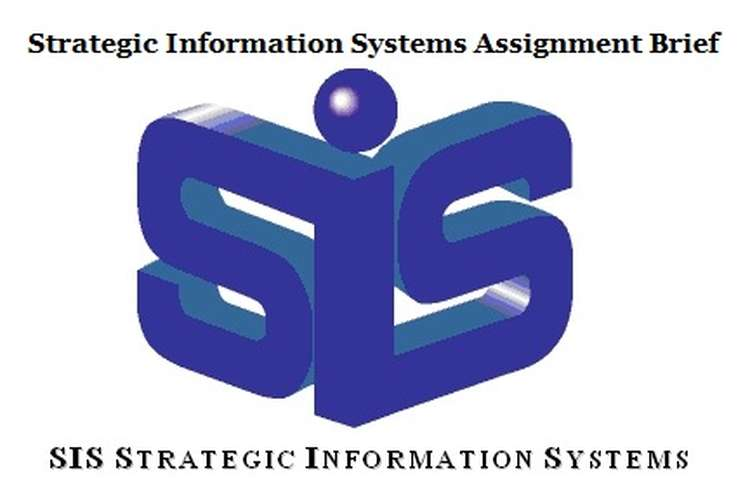 Strategic Information Systems Assignment Brief help