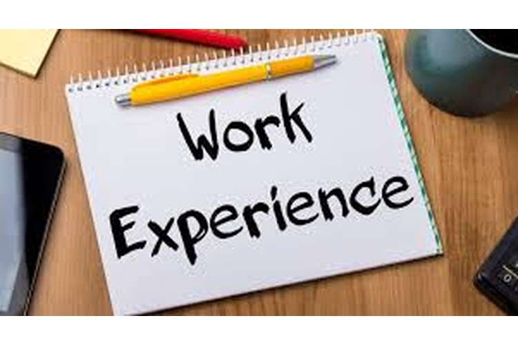 Unit 28 Work Based Experience Assignment