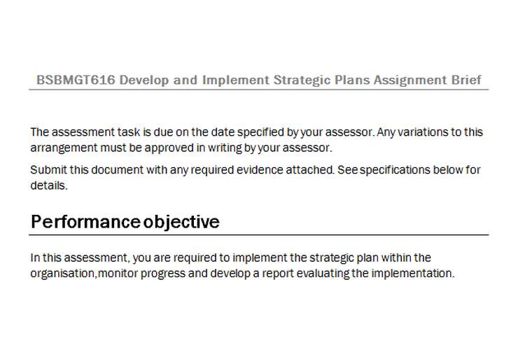BSBMGT616 Develop Implement Strategic Plans Assignment Brief