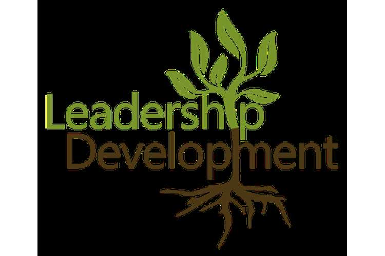 MAN6325 Leadership Development Assignment help