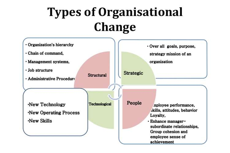 Organizational Change Management Assignment