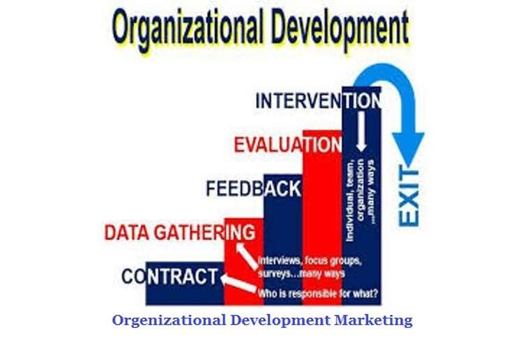 Develop Organisational Marketing Objectives Assignment Help