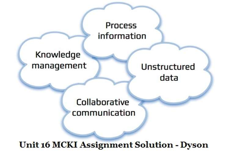 Unit 16 MCKI Assignment Solution - Dyson