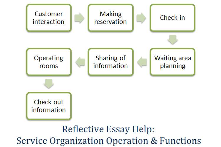 Reflective Essay Help: Service Organization Operation & Functions